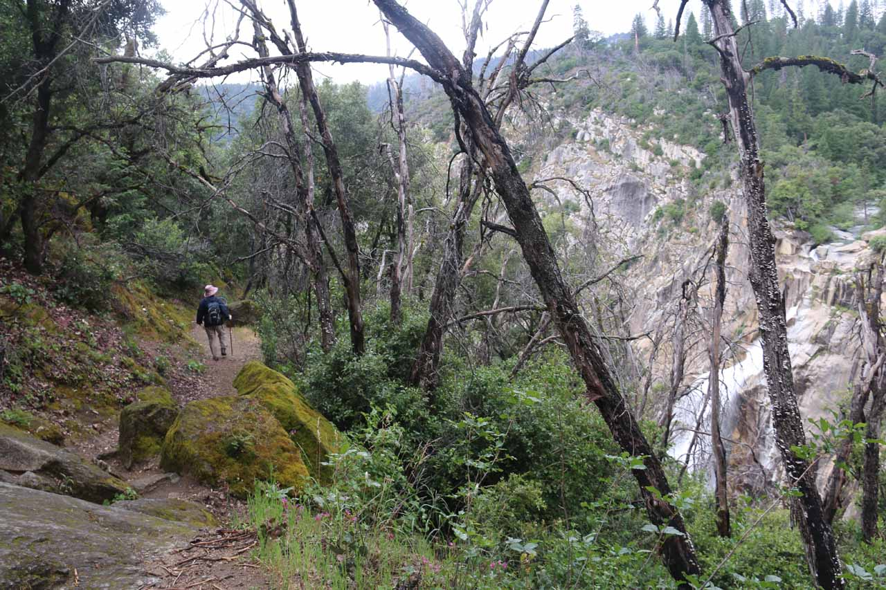 Heading back towards the main trail after having our fill of the top of Feather Falls
