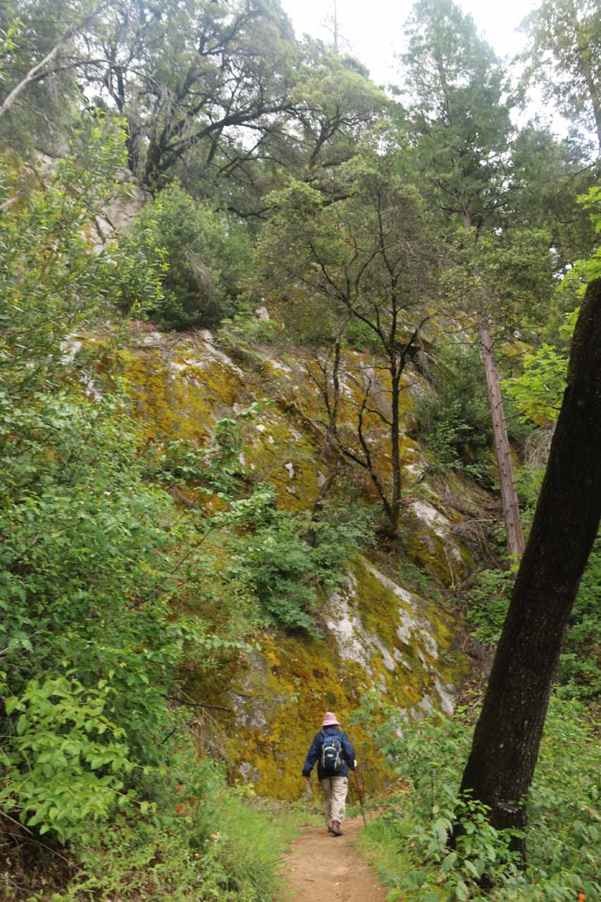 After bottoming out on the lower loop, the trail gradually ascended alongside cliffs like this