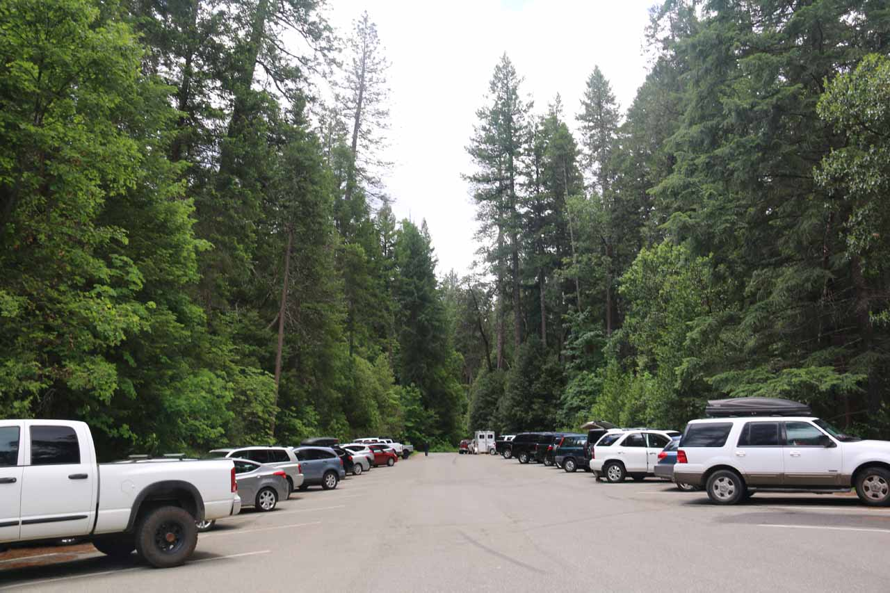 After 6 hours of hiking and enjoying the Feather Falls experience, we were back at the trailhead where all of the parking spots were occupied