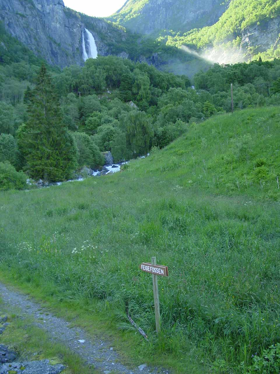 At the official trail to Feigefossen after about 300m of walking along the road