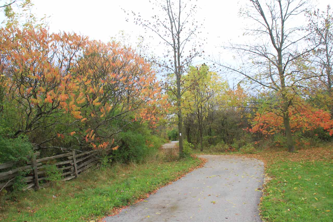 Following the paved Peter Street Trail in search of a better view of Felker's Falls