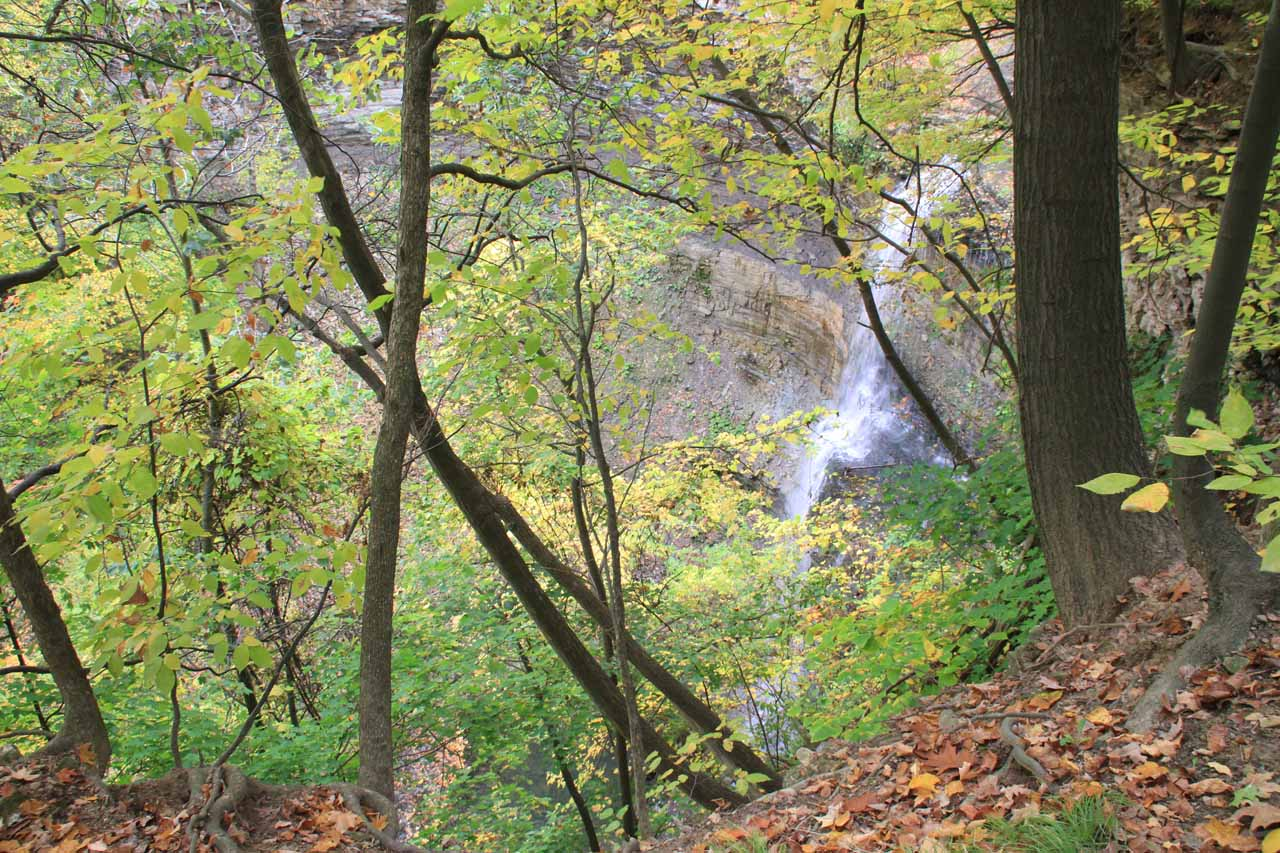 Looking through foliage towards a partial view of Felker's Falls