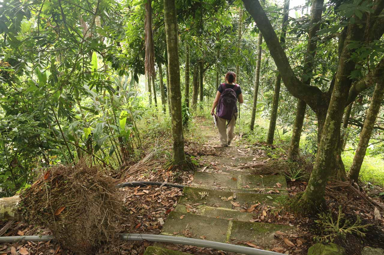 After reaching the trailhead, we saw these sets of steps, which we immediately descended