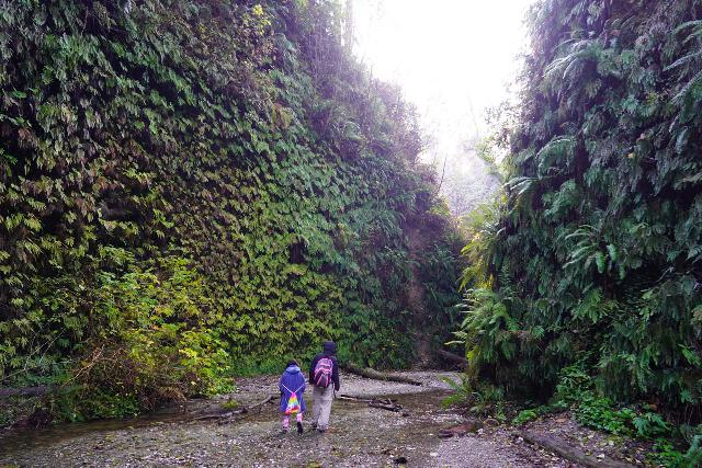 Fern_Canyon_Gold_Dust_Falls_055_11212020 - Julie and Tahia at a particularly scenic part deep within Fern Canyon