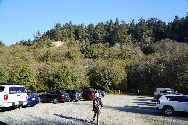 Fern_Canyon_Gold_Dust_Falls_484_11212020 - The parking lot at the end of Davidson Road, which was busy by mid-day and early afternoon, but it was quiet when we started early in the morning