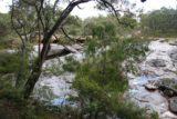 Fernhook_Falls_001_06192006 - Looking through the foliage across the mostly dry Fernhook Falls