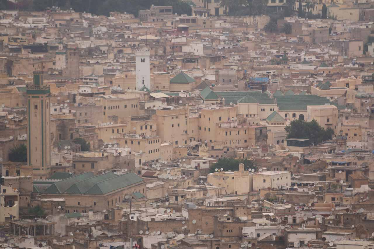 Closer look at some of the green-roofed buildings of the Fes medina