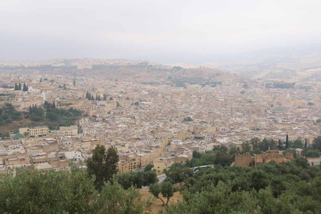 Context of just part of the massive medina of Fes