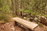 Fettjeafallet_016_07112019 - A rest bench on the way to Fettjeåfallet, where the trail started to follow alongside the tannin-colored Fettjeån