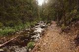 Fettjeafallet_022_07112019 - Following along the stream while on the trail to Fettjeafallet