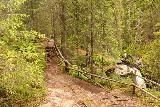 Fettjeafallet_049_07112019 - Going past a railing and brink of an intermediate waterfall en route to Fettjeafallet