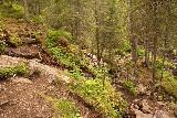 Fettjeafallet_052_07112019 - Descending on another rocky and steep stretch en route to Fettjeafallet