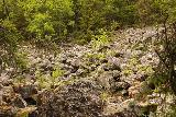 Fettjeafallet_056_07112019 - Traversing a rockslide prone section en route to Fettjeafallet
