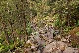 Fettjeafallet_122_07112019 - Approaching a rocky part of the trail on the return hike from Fettjeafallet
