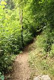 Finsterbach_Waterfalls_103_07112018 - Context of the forested trail between the second and the third Finsterbach Waterfalls