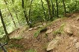 Finsterbach_Waterfalls_178_07112018 - Continuing the downhill hike along some steep switchbacks en route to Sattendorf after having had my fill of the last of the Finsterbach Waterfalls