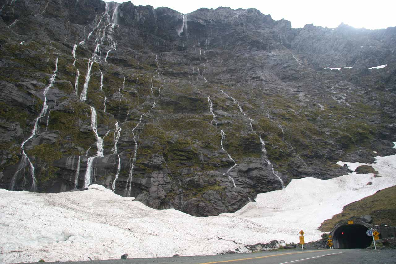 These veins of waterfalls were coming down around the west end of the Homer Tunnel shortly after a clearing rain storm