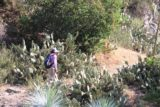 Fish_Canyon_13_019_05112013 - Mom going between a few stalks of cacti on the Fish Canyon Trail
