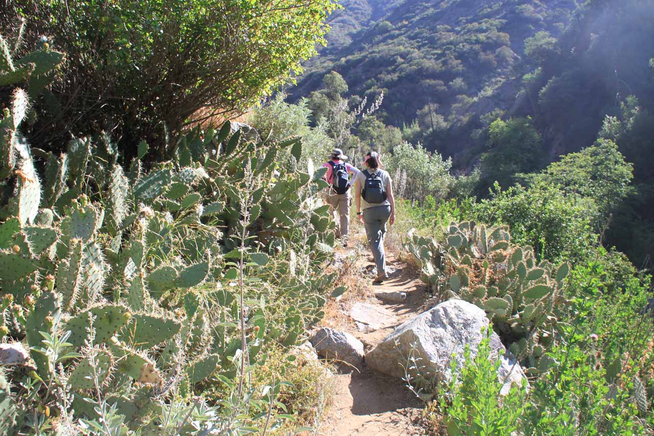 Julie and Mom going past some more cacti as we continued along the Fish Canyon Trail