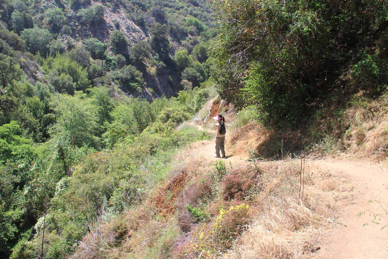 Julie up ahead negotiating the narrow trail back to the trailhead