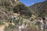 Fish_Canyon_Falls_058_02132016 - Julie, Tahia, and Mom passing through a grove of cacti on the Fish Canyon Falls hike