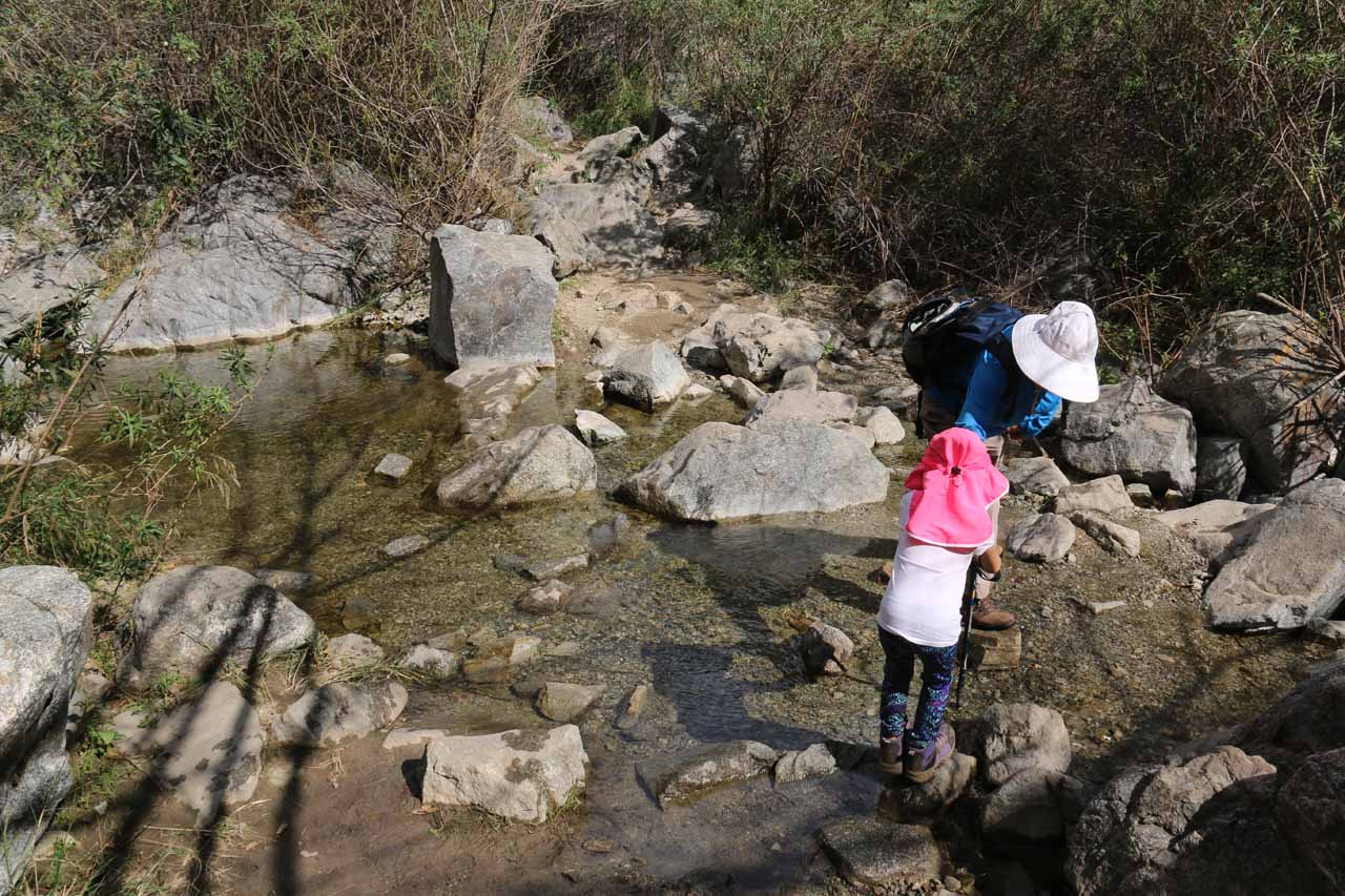 The only unbridged stream crossing on the hike. Our daughter needed a little assistance from her grandma