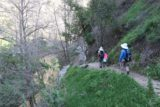 Fish_Canyon_Falls_134_02132016 - The hiking party approaching another stretch alongside Fish Creek