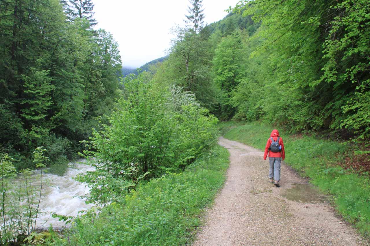 Walking alongside the swollen Flumen Stream