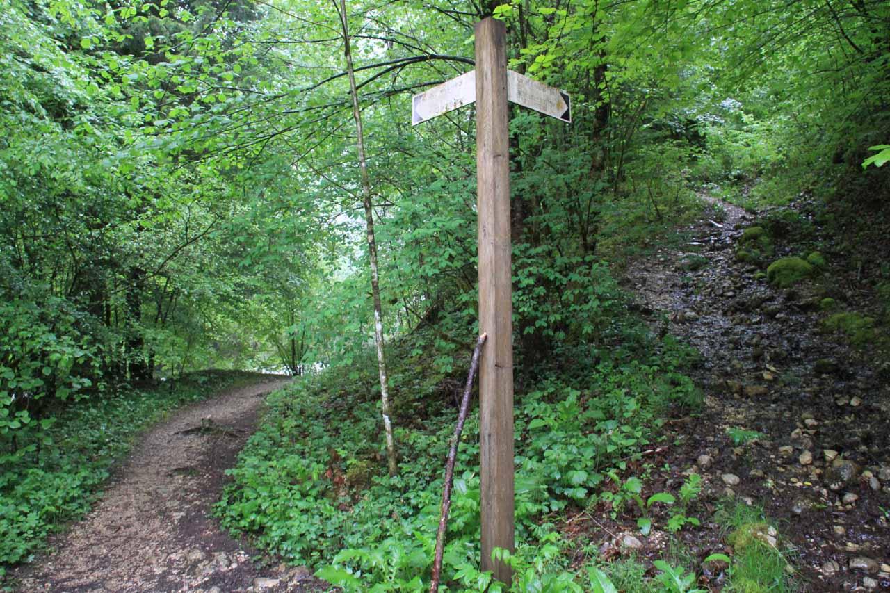 A split in the trail