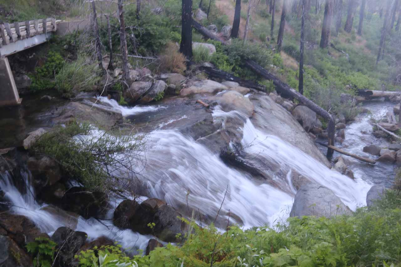 There were more cascades immediately downstream of the bridge fronting Foresta Falls