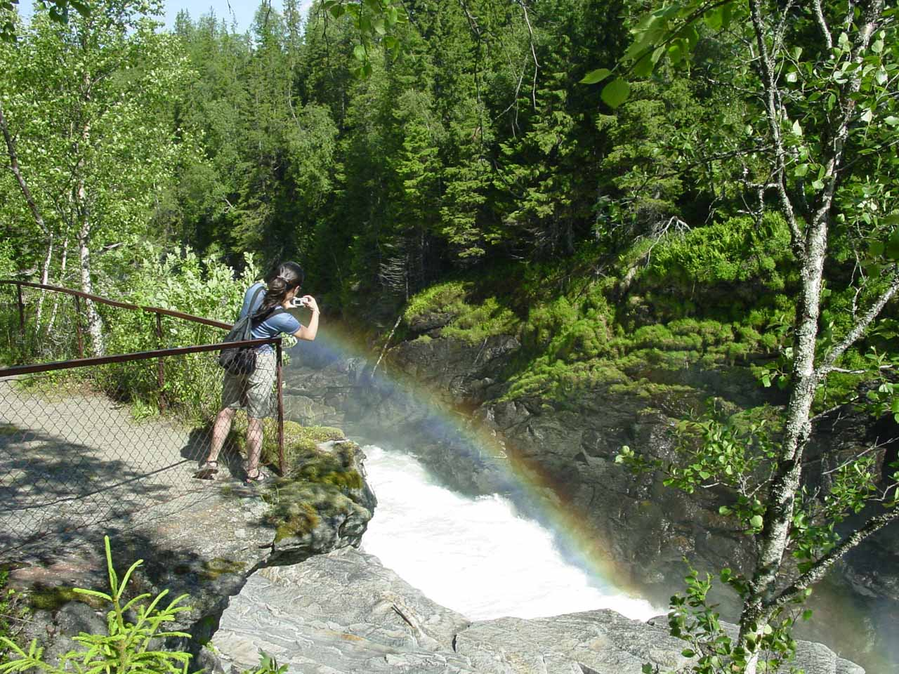 Julie tries to get a better view of Formofossen and the bold rainbows