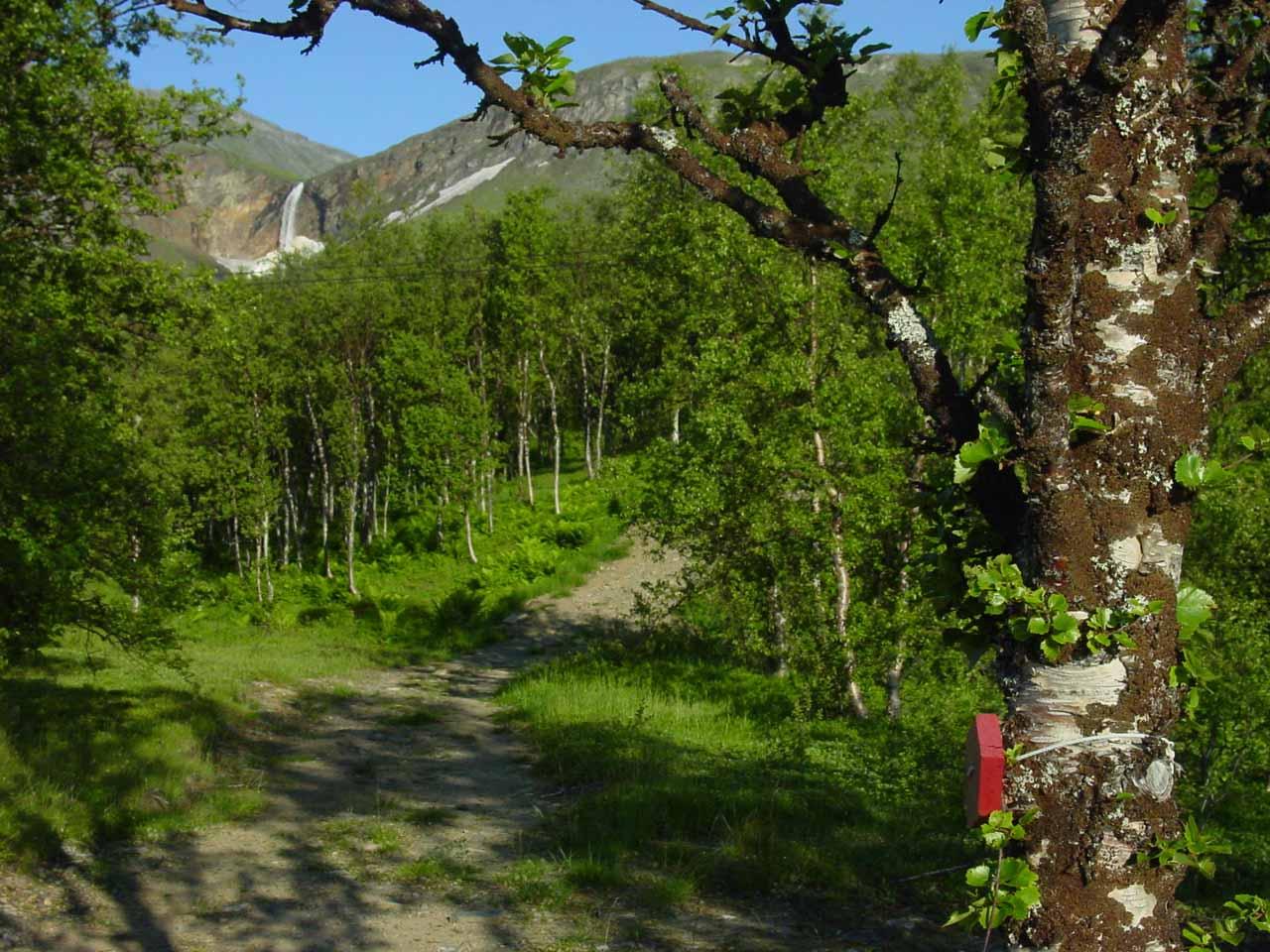 Red marker guiding me towards Fosselvfossen