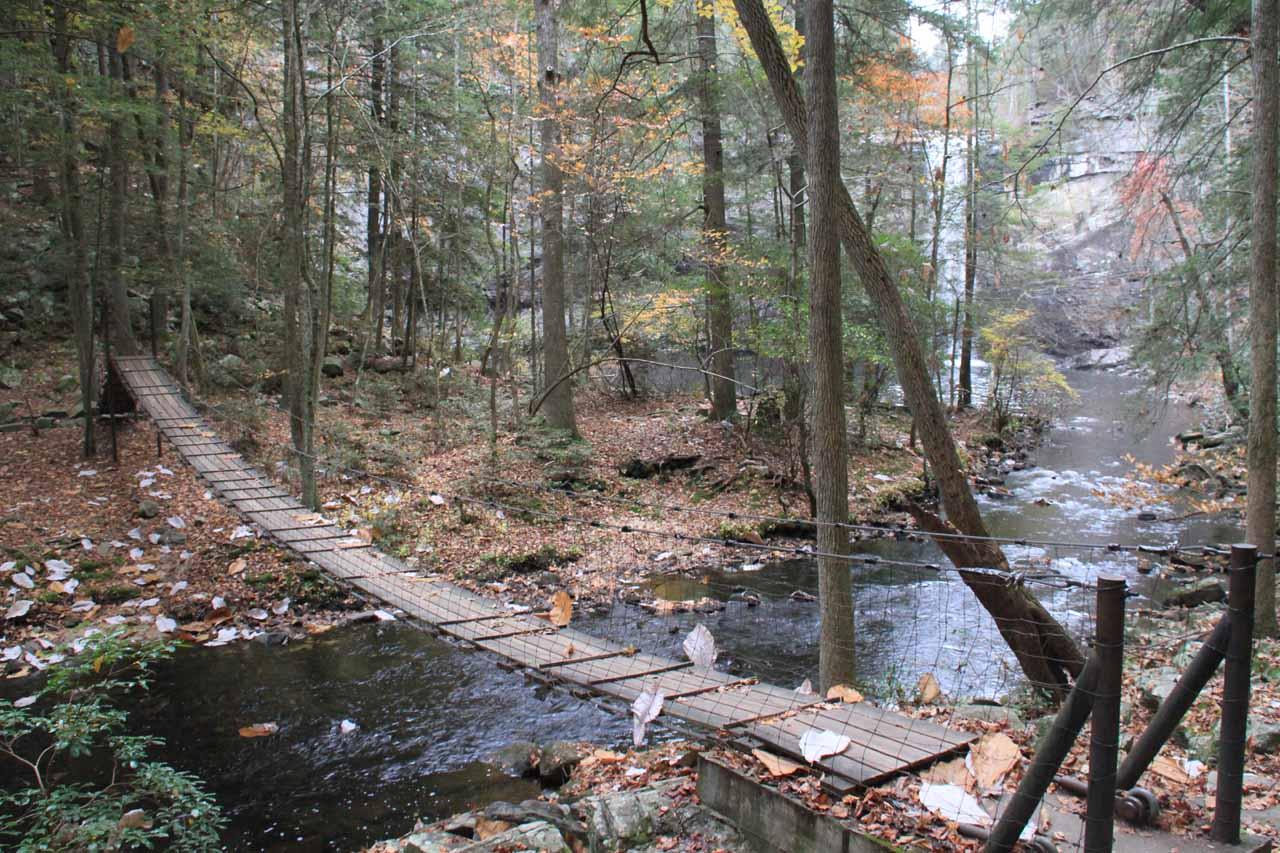 Swinging bridge near the base of Foster Falls