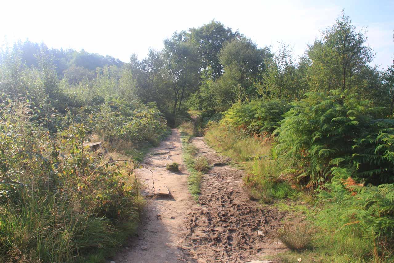 Between Sgwd Clun-Gwyn and Sgwd yr Eira, I followed a fairly long stretch of dry hiking in terrain like this
