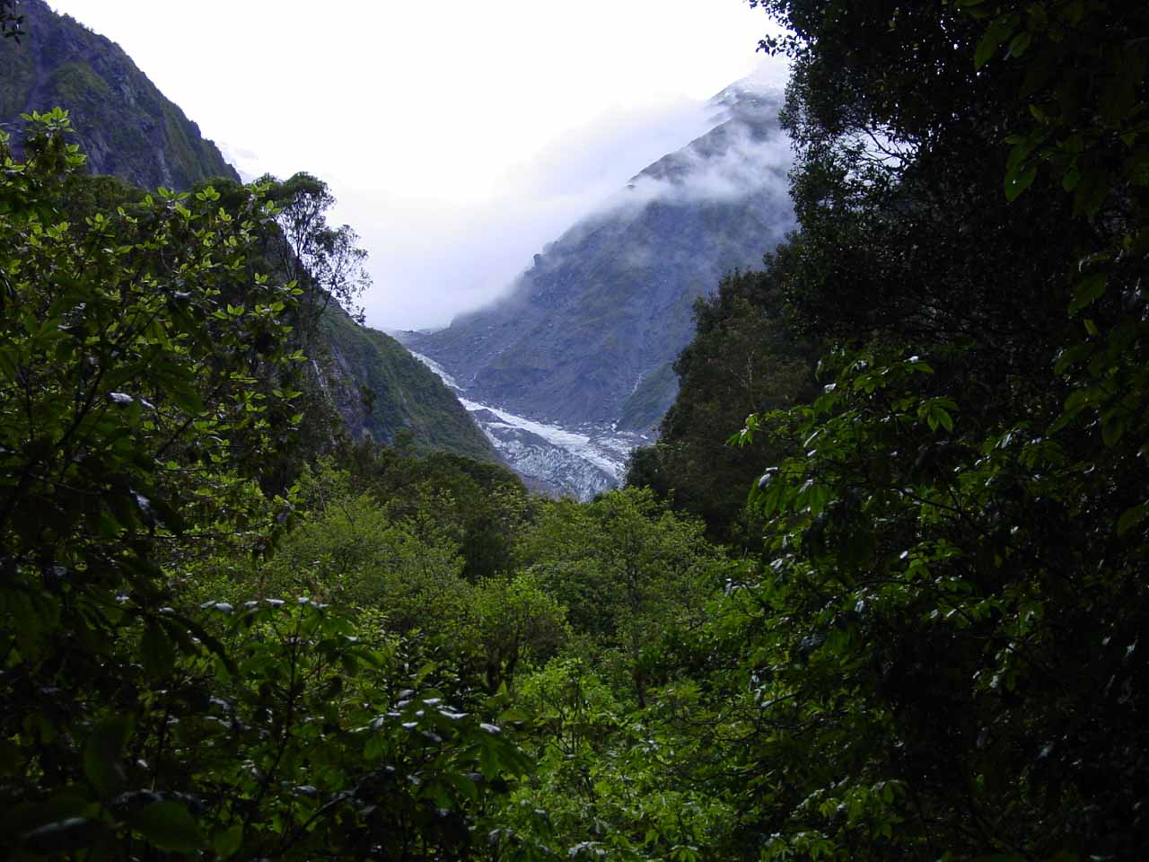 Partial view of the Fox Glacier in November 2004 from a lookout on the road to the south side of the Fox River (opposite the glacier access road)