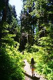 Franklin_Falls_188_06202021 - Tahia trying on the Black Diamond Distance FLZ trekking poles on the Wagon Trail