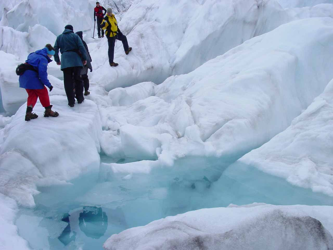 The tour group going around some pools of melted glacier water while we were atop the Franz Josef Glacier