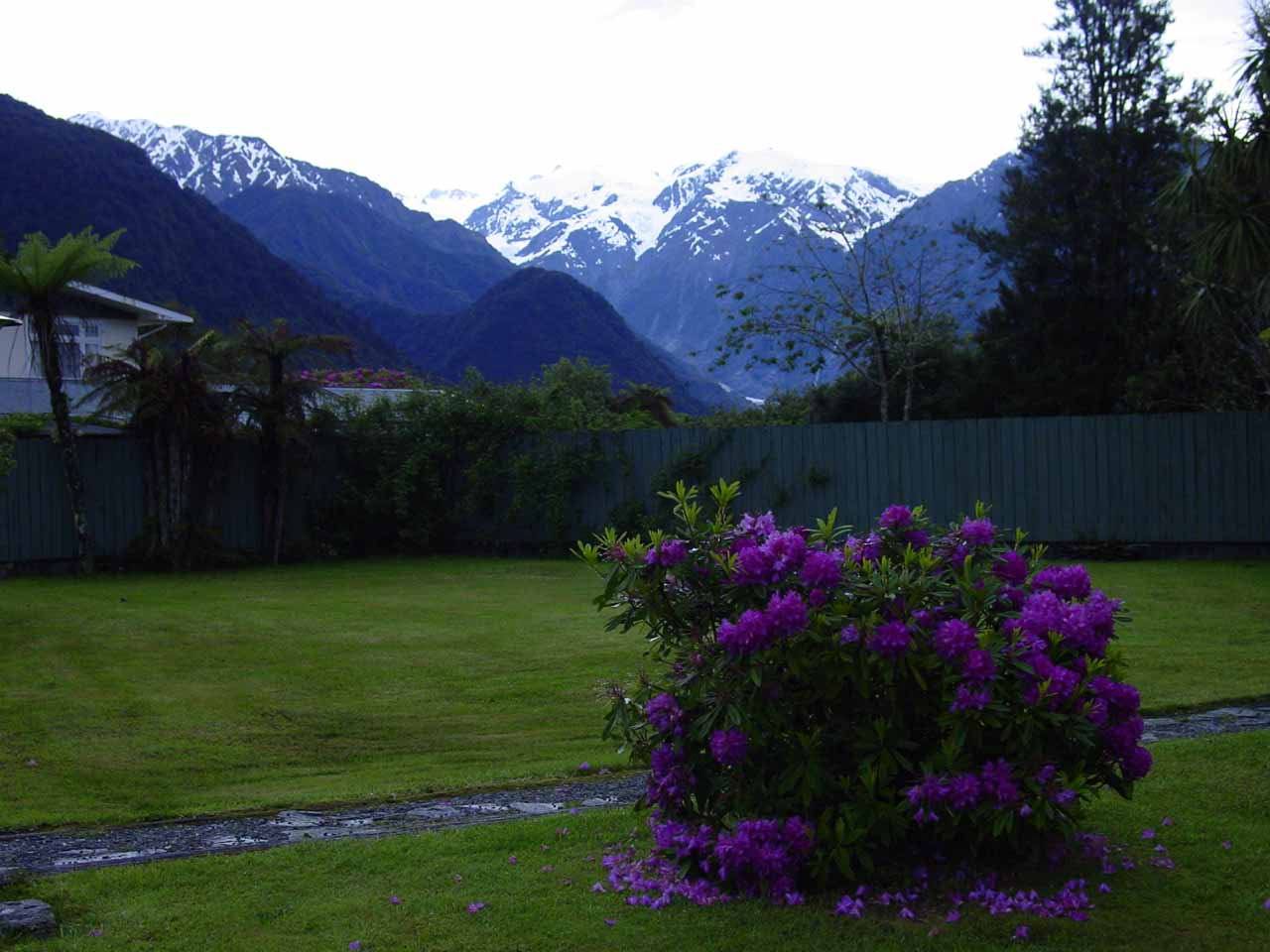 The view from our so-called Glacier View Motel in Franz Josef