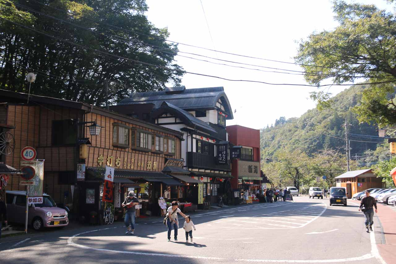 It was reassuring that we started to pass more of these cafes, yakitori stalls, and shops as we knew we were headed closer to the Fukuroda Waterfall at this point