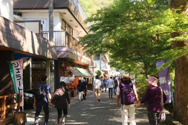 Fukuroda_009_10152016 - The roughly 1km walk from the Takimoto Bus Stop to the Fukuroda Falls entrance passed through yakitori stands, shops, and cafes