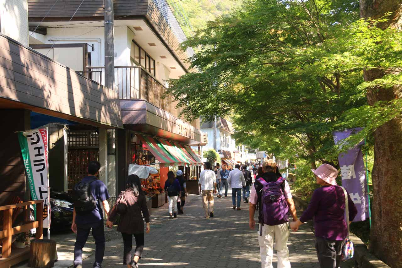 The roughly 1km walk from the Takimoto Bus Stop to the Fukuroda Falls entrance passed through yakitori stands, shops, and cafes
