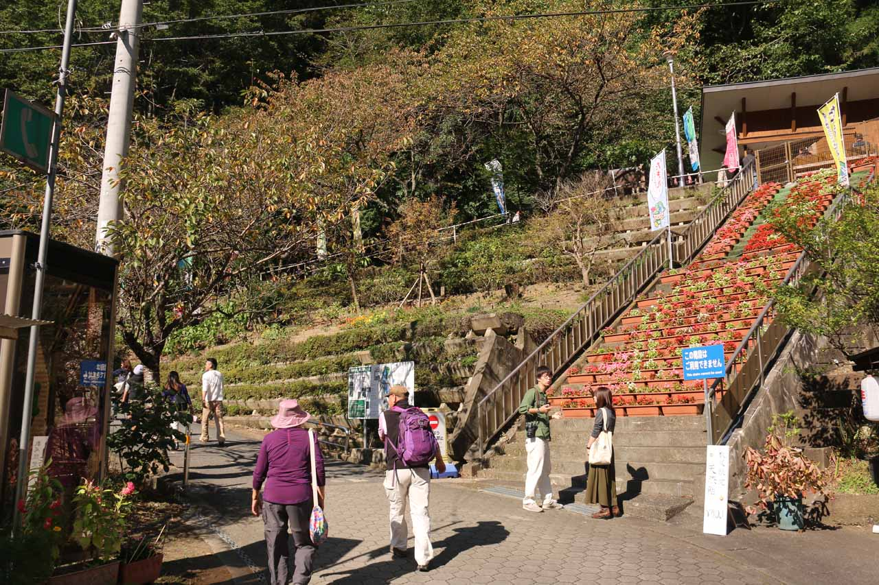 After finally seeing a sign confirming that the entrance to the Fukuroda Waterfall was near, we went by this terraced garden where a sign urged visitors not to use it as steps to shortcut up past the switchback to our left
