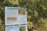 Fuller_Mill_Creek_001_04172011 - Mountain Yellow Legged Frog sign