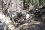 Fuller_Mill_Creek_008_04172011 - Julie hiking alongside the Fuller Mill Creek