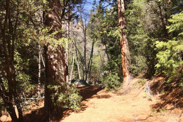Fuller_Mill_Creek_Falls_003_02122017 - The trail following along Fuller Mill Creek as we pursued the Fuller Mill Creek Falls