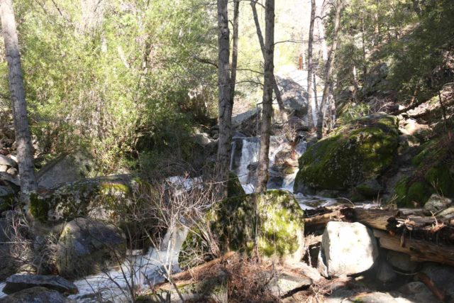 Fuller_Mill_Creek_Falls_009_02122017 - Context of some of the intermediate waterfalls just downstream of the Fuller Mill Creek Falls
