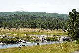 GPS_Overlook_134_08062020 - Context of the thermal runoff draining into the Firehole River as seen from around the Fairy Falls Trailhead in August 2020