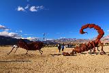 Galleta_Meadows_106_02092019 - The scorpion and grasshopper at Galleta Meadows