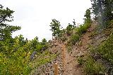 Garden_Creek_Falls_025_07292020 - Going up a steep track leading to an overlook of Casper
