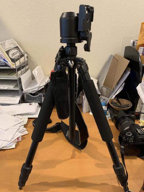 This is my Giottos GB1140 tripod with Manfrotto 486RC2 camera mount, both of which have served me for well over a decade (and continues to do so)